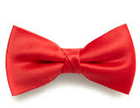 Tie and bow Manufacturers in Delhi